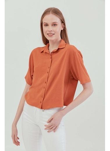 Vitrin VİTRİN Yakalı Kısa Kol Crop Gömlek Taba